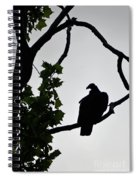Buzzard Silhoutte Spiral Notebook