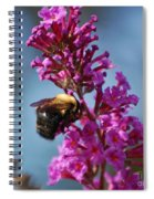 Buzzed Spiral Notebook