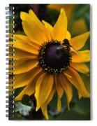 Buzzed Spiral Notebook