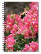 Buzzing Around Spiral Notebook