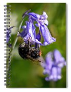 Buzzy Bee On Bluebells Spiral Notebook