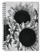 Bw Sunflowers #010 Spiral Notebook