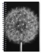 Bw12 Spiral Notebook