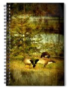 By The Little Tree - Lake Carasaljo Spiral Notebook