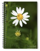 By The Pond Spiral Notebook