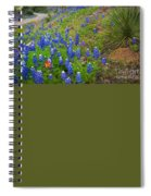 Hill Country Yucca Spiral Notebook