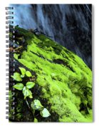 By The Waterfall Spiral Notebook
