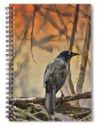 Bye Bye Birdie Spiral Notebook