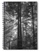c Spiral Notebook
