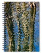 C And O Abstract Spiral Notebook