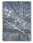 C Embedded In The Log Spiral Notebook