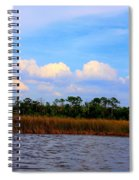 Cabbage Palms And Salt Marsh Grasses Of The Waccasassa Preserve Spiral Notebook