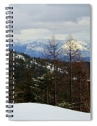 Cabinet View Spiral Notebook