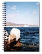 Cabo San Lucas Pelican Spiral Notebook
