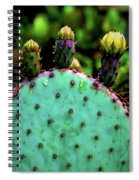 Cacti And Friends Spiral Notebook