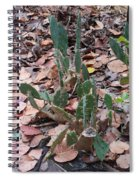 Cacti And Leaves Spiral Notebook