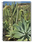 Cacti Of Koko Crater Spiral Notebook