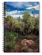 Cactus And Bird Spiral Notebook