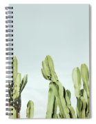 Cactus And Sky Vintage Spiral Notebook