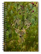Cactus Buck Spiral Notebook