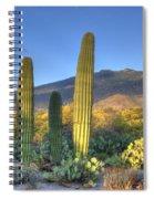 Cactus Desert Landscape Spiral Notebook