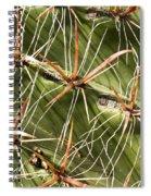 Cactus Diagonal Pattern Spiral Notebook