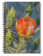 Cactus Flower And Buds Spiral Notebook