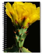 Cactus Flower H28 Spiral Notebook