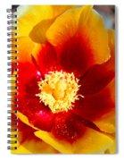 Cactus Flower V Spiral Notebook