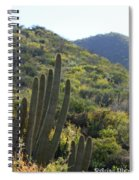 Cactus In The Desert  Spiral Notebook