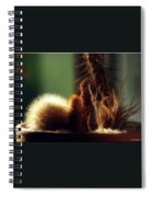 Cactus Light Spiral Notebook