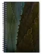 Cactus Outlined Spiral Notebook