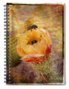 Cactus Spring Beauty W Frame Spiral Notebook