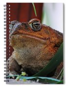 Cain Toad Spiral Notebook