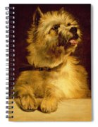 Cairn Terrier   Spiral Notebook