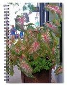 Caladium Spiral Notebook