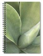 Cali Agave Spiral Notebook