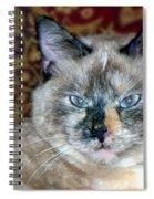 Cali-mese Spiral Notebook