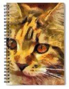 Calico Cat Spiral Notebook