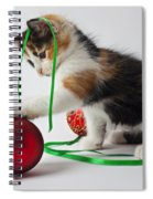 Calico Kitten And Christmas Ornaments Spiral Notebook