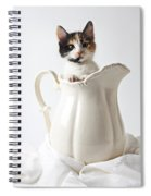 Calico Kitten In White Pitcher Spiral Notebook