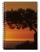 California, Big Sur Coast Spiral Notebook