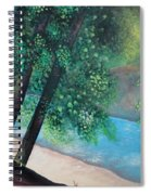 California Magic Spiral Notebook