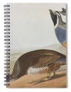 California Partridge Spiral Notebook
