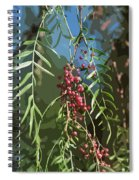 California Pepper Tree Leaves Berries Abstract Spiral Notebook