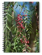 California Pepper Tree Leaves Berries I Spiral Notebook