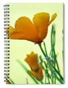California Poppies Spiral Notebook