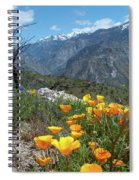 California Poppy And Mountain Panorama Spiral Notebook