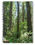 California Redwood Trees Forest Art Prints Spiral Notebook