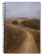 California Winter Spiral Notebook